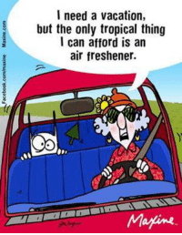 Memes, Marines, and Vacation: I need a vacation,  but the only tropical thing  I can afford is an  air freshener.  Marine