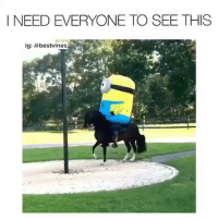 Memes, Watch, and 🤖: I NEED EVERYONE TO SEE THIS  ig: abestvines what did i just watch? 😂 👉🏻(@bestvines bestvines)