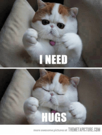 I NEED  HUGS  more awesome picturesat  THEMETAPICTURE.COM When you are alone