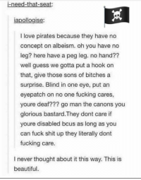 Pirates aren't as evil as I thought 😊: i-need-that-seat:  iapollogise:  I love pirates because they have no  concept on albeism. oh you have no  leg? here have a peg leg. no hand??  well guess we gotta put a hook on  that, give those sons of bitches a  surprise. Blind in one eye, put an  eyepatch on no one fucking cares,  youre deaf??? go man the canons you  glorious bastard. They dont care if  youre disabled bcus as long as you  can fuck shit up they literally dont  fucking care.  I never thought about it this way. This is  beautiful Pirates aren't as evil as I thought 😊