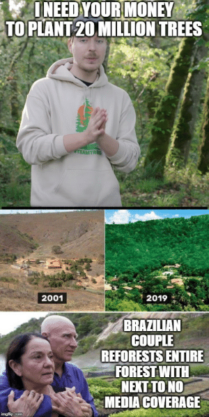 Everyone can make a difference: I NEED YOUR MONEY  TO PLANT 20 MILLION TREES  TEAMTRES  2019  2001  BRAZILIAN  COUPLE  REFORESTS ENTIRE  FOREST WITH  NEXT TO NO  MEDIA COVERAGE  imgflip.com Everyone can make a difference