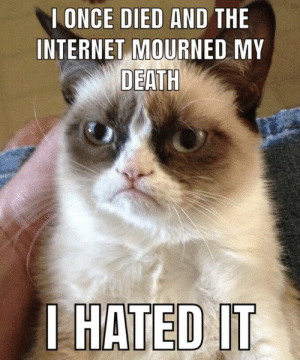 Internet, Death, and Human: I ONCE DIED AND THE  INTERNET MOURNED MY  DEATH  HATED  IT *cries in human*