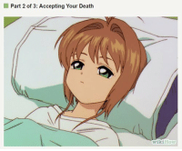 Death: I Part 2 of 3: Accepting Your Death  Wiki How