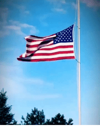 I pledge Allegiance to the flag of the United States of America and to the Republic for which it stands, one nation under God, indivisible, with Liberty and Justice for all. 🇺🇸🇺🇸🇺🇸 This video is for the real heroes who by their actions saved many lives & should have received the same media attention like Chris Kyle, Michael Murphy, Glenn Doherty, Tyrone Woods, Brian Terry, Pat Tillman and thousands more Music from our good friend @davebrayusa 🇺🇸 Tag friends & Follow 👣 👉🏻 @unclesamsmisguidedchildren 👉🏻 @unclesamsmisguidedchikdren UncleSamsMisguidedChildren 556 762 tactical military guns getafterit militarymuscle 2ndamendment Rifle Gunlife secondammendment 2A donaldtrump makeamericagreatagain SemperFi usairforce USMC usnavy usarmy ammo uscoastguard concealedcarry gunsofinstagram igmilitia ar15 iggunslingers pewpew ccw Pewpewpew: I pledge Allegiance to the flag of the United States of America and to the Republic for which it stands, one nation under God, indivisible, with Liberty and Justice for all. 🇺🇸🇺🇸🇺🇸 This video is for the real heroes who by their actions saved many lives & should have received the same media attention like Chris Kyle, Michael Murphy, Glenn Doherty, Tyrone Woods, Brian Terry, Pat Tillman and thousands more Music from our good friend @davebrayusa 🇺🇸 Tag friends & Follow 👣 👉🏻 @unclesamsmisguidedchildren 👉🏻 @unclesamsmisguidedchikdren UncleSamsMisguidedChildren 556 762 tactical military guns getafterit militarymuscle 2ndamendment Rifle Gunlife secondammendment 2A donaldtrump makeamericagreatagain SemperFi usairforce USMC usnavy usarmy ammo uscoastguard concealedcarry gunsofinstagram igmilitia ar15 iggunslingers pewpew ccw Pewpewpew