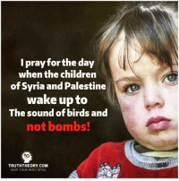 Memes, Birds, and Syria: I pray forthe day  when the children  of Syria and Palestine  wake up to  The sound of birds and  not bombs!  TRUTH THEORY COM  KEEP YOUR MIND OPEN