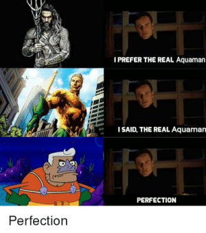 Dank, Memes, and Target: I PREFER THE REAL Aquaman  ISAID, THE REAL Aquaman  PERFECTION  Perfection Perfection. by ByGoWeeXx MORE MEMES