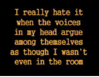 voices in my head: I really hate it.  when the voices  in my head argue  among themselves  as though I wasn't  even in the room