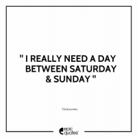 """#1982 #Funny Suggested by The Editor Mc Sid Dharth Sood ( Epic Quotes )  From New Delhi , India: """" I REALLY NEED A DAY  BETWEEN SATURDAY  & SUNDAY""""  Unknown  epic  quotes #1982 #Funny Suggested by The Editor Mc Sid Dharth Sood ( Epic Quotes )  From New Delhi , India"""