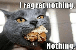 Cats, Memes, and Regret: I regret nothing  Nothing The 20 Funniest Diet Memes...Plus Cats!   MAN v FAT