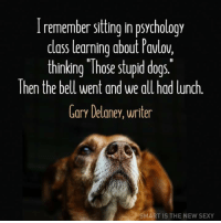 """Pavlov's Pupils: I remember sitting in psychology  class learning about Pavlov.  thinking """"Those stupid dogs  hen the bell went and we all had lunch  Gary Delaney, writer  SMART IS THE NEW SEXY Pavlov's Pupils"""