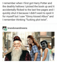 "What are some good-cool twitter accounts to follow ????: I remember when I first got Harry Potter and  the deathly hallows I picked the book up and it  accidentally flicked to the last few pages and I  quickly shut it because I didn't want to spoil it  for myself but I saw ""Ginny kissed Albus"" and  I remember thinking ""fucking plot twist"".  brandonandmeera What are some good-cool twitter accounts to follow ????"