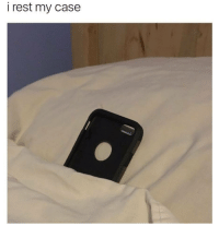 Rest, Case, and My Case: i rest my case