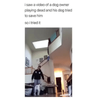 Dogs, they'll break your heart. (@basicbitch has the best page): i saw a video of a dog owner  playing dead and his dog triec  to save him  so i tried it Dogs, they'll break your heart. (@basicbitch has the best page)