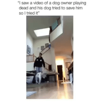 """Memes, Saw, and Videos: """"I saw a video of a dog owner playing  dead and his dog tried to save him  So l tried it"""" my favorite account on IG is @_________sext____________!! follow her for the best videos and memes ever 😭 @_________sext____________ @_________sext____________ i guarantee you'll laugh :)"""