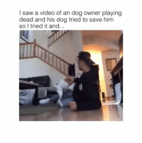 @larrayox: I saw a video of an dog owner playing  dead and his dog tried to save him  so I tried it and... @larrayox