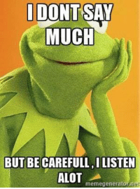 Kermit the Frog, Net, and Generators: I SAY  DONT MUCH  BUT BE CAREFULL ILISTEN  ALOT  meme generator net