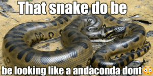i searched up anaconda on youtube dont tell my mom!!1!1! 😂😂😂😂😂: i searched up anaconda on youtube dont tell my mom!!1!1! 😂😂😂😂😂