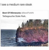 Funny, Best, and Minnesota: I see a medium rare stealk  Best Of Minnesota @BestPixMN  Tettegouche State Park. If you a real @foodie you do too.