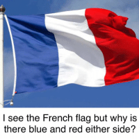 French: I see the French flag but why is  there blue and red either side?