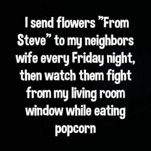 "friday night: I send flowers ""From  Steve"" to my neighbors  wife every Friday night,  then watch them fight  from my living room  window while eating  popcorn"