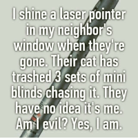 Meme, Memes, and Evil: I shine a laser pointer  in my neighbor S  window when they re  gone. Their cat has  trashed sets of mini  blinds chasing They  have no idea it's me.  Am I evil? Yes, I am. Just cat things. catmeme cat meme someonedatemeplease
