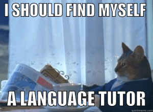 3 Smart Steps to Find a Language Tutor Who Actually Gets You ...: I SHOULD FIND MYSELR  A LANGUAGE TUTOR  quickmeme.com 3 Smart Steps to Find a Language Tutor Who Actually Gets You ...