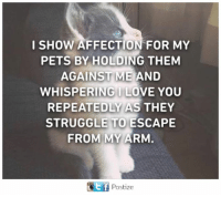 Memes, Struggle, and Pets: I SHOW AFFECTION FOR MY  PETS BY HOLDING THEM  AGAINST ME AND  WHISPERINGILOVE YOU  REPEATEDLY AS THEY  STRUGGLE TO ESCAPE  FROM MY ARM  Ef Postize