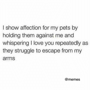 Dank, Love, and Memes: I show affection for my pets by  holding them against me and  whispering I love you repeatedly as  they struggle to escape from my  arms  @memes I wish someone would do that to me 🖤🙀🐶
