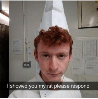 Memes, Tag Someone, and 🤖: I showed you my rat please respond tag someone who u showed ur rat to 😔