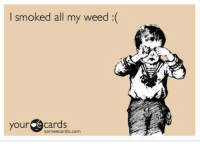 I hate Sunday nights.: I smoked all my weed(  your e cards  someecards.com I hate Sunday nights.