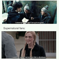 i feel like i need someone to post for me cuz i never do it anymore, this account is going dead: I solemnly wear that Iam up to no good.  I solemnly swear that I am up to no good.  Supernatural fans:  solemnly swear not to hunt like a dumbass. i feel like i need someone to post for me cuz i never do it anymore, this account is going dead
