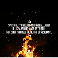 Baked, Memes, and Paradigm: I  SPIRITUALITY UNTESTED AND UNCHALLENGED  IS LIKE ASWORDMADE OF TIN FOIL.  TRUE STEELIS FORGEDINUHE FIRE OF RESISTANCE. I've seen it happen. Someone comes to a plant medicine ceremony with some half baked new age spirituality, or some dogmatic doctrine from a highly manipulated text. Then once in the forge of truth, their spirituality breaks. As long as they don't hold on too tight, it turns into a blessing. But if they remain attached to those tin foil paradigms, the process is highly destabilizing. Be willing to put all of your ideas into the fire. What emerges will be steel, and ready to put to use in the battle for your spirit and happiness.