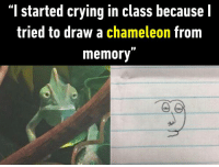 "9gag, Crying, and Dank: ""I started crying in class because l  tried to draw a chameleon from  memory"" When you have the talent and when you don't.  https://9gag.com/gag/ayxZEGq/sc/funny?ref=fbsc"