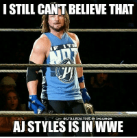 Memes, Phenomenal, and Wrestling: I STILL CANTABELEVE THAT  on AJ STYLES IS IN WWE Simply Phenomenal. ajstyles johncena wwe wwememes raw share love prowrestling wrestling follow memes lol haha share like stillrealradio stillrealtous burn smackdownlive nxt faf wwf njpw luchaunderground tna roh