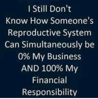 America's Freedom Fighters: I Still Don't  Know How Someone's  Reproductive System  Can Simultaneously be  0% My Business  AND 100% My  Financial  Responsibility America's Freedom Fighters