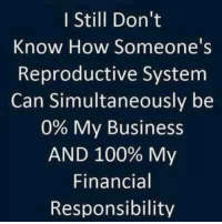 Anaconda, Memes, and Weird: I Still Don't  Know How Someone's  Reproductive System  Can Simultaneously be  0% My Business  AND 100% My  Financial  Responsibility Weird.