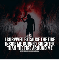 """Fire, Memes, and Suits: I SURVIVED BECAUSE THE FIRE  INSIDE ME BURNED BRIGHTER  THAN THE FIRE AROUND ME  SUCCESSDOSE GIOVANNI ANTHONY 💥Comment """"YES"""" if you'll survive anything in the way of your dreams. ➖➖ Inspired by @dailysparktv ➖➖➖➖ Check them out 👇🏼 @dailysparktv ➖➖➖➖ 📸 @jason_x1n ➖➖➖➖ suit tie suits suitup suitandtie gentleman dapper gentlemen bespoke gq sartorial menwithclass menswear"""