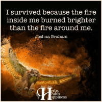 Pass it on... :): I survived because the fire  inside me burned brighter  than the fire around me.  Joshua Graham  erbs  ealth  appiness Pass it on... :)