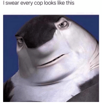 Memes, 🤖, and Cop: I swear every cop looks like this License and registration please
