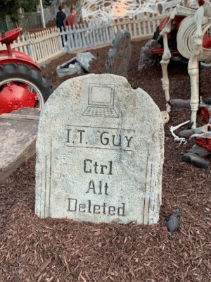 Ctrl Alt Deleted: I.T GUY  Gtrl  Alt  Deleted Ctrl Alt Deleted