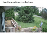 Bless Up, Memes, and Reddit: I take it my mailman is a dog lover.  0705 2018 02 20  27 THIS IS THE BEST THING EVER. THIS MADE MY HEART EXPLODE. BLESS UP BELOVEDS 😢😍😍 (vid: reddit u-MJNau)