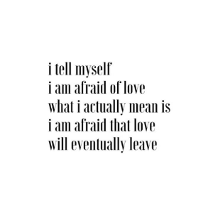 Love, Mean, and Will: i tell myself  i am afraid of love  what i actually mean is  i am afraid that love  will eventually leave