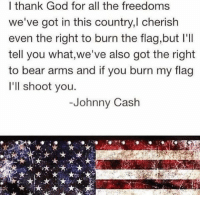 Makes perfect sense: I thank God for all the freedoms  we've got in this country,l cherish  even the right to burn the flag,but l'll  tell you what,we've also got the right  to bear arms and if you burn my flag  I'll shoot you.  Johnny Cash Makes perfect sense