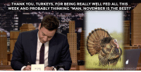 """Target, youtube.com, and Thank You: i-THANK YOU, TURKEYS, FOR BEING REALLY WELL FED ALL THIS  WEEK AND PROBABLY THINKING """"MAN, NOVEMBER IS THE BEST!""""  門!  LLONTONIGHT <p>Jimmy takes some time to <a href=""""https://www.youtube.com/watch?v=RgeIvfM0ClQ&amp;list=UU8-Th83bH_thdKZDJCrn88g"""" target=""""_blank"""">write out his weekly thank you notes</a>!</p>"""