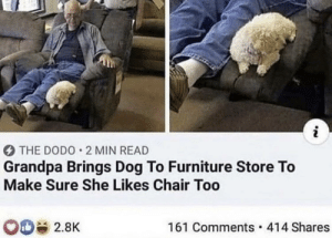 He's gotta test it out too: i  THE DODO 2 MIN READ  Grandpa Brings Dog To Furniture Store To  Make Sure She Likes Chair Too  161 Comments 414 Shares  2.8K He's gotta test it out too