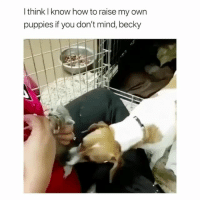 Ass, Puppies, and How To: I think I know how to raise my own  puppies if you don't mind, becky what a sassy ass dog