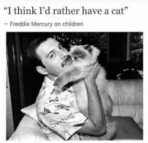 "Children, Memes, and Mercury: ""I think I'd rather have a cat""  Freddie Mercury on children  -K"