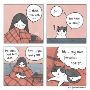[OC] Sick: I think  I'm Sick  Oh!  You have  a cold?  Ill settle  right here  then  Aww...you  really Care  Ah... mu own  personal  heater...  수지 @catncat comics [OC] Sick
