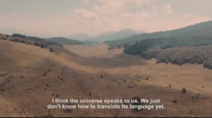 How To, Translate, and How: I think the universe speaks to us. We just  don't know how to translate its language yet.