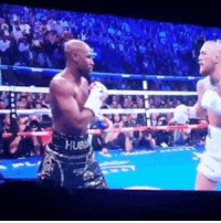 Mayweather, Boop, and McGregor: I Think This Belongs Here...